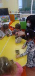 Децата от група Пинокио обогатиха знанията си за условията необходими за развитието на растенията - ДГ №63 Слънце - София